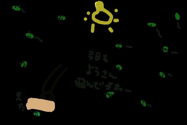 カメムシ退治4