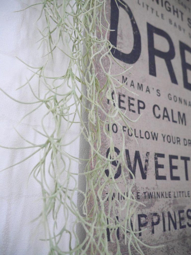 フェイクグリーン 比較 植物 枯らしてしまう